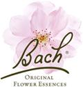 Bach bloesem remedies