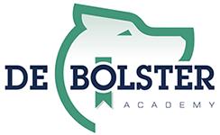 De Bolster Academie