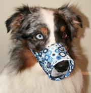 Happy Muzzle