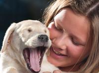 Honden houden niet altijd van aaien en knuffelen