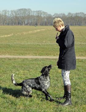 Hondenfluitje