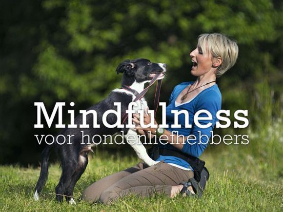 Mindfulness voor hondenliefhebbers