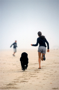 Op vakantie met je hond