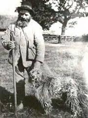 Smithfield Sheepdog