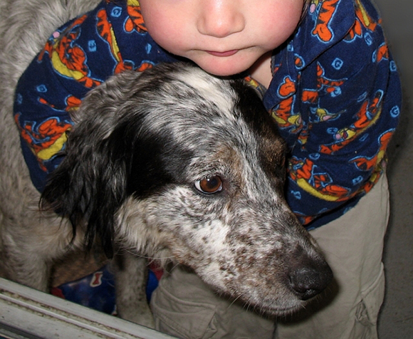 """""""Hond"""