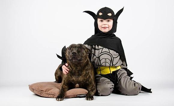 Hoog-risico hond
