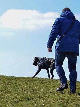 Vermiste hond opsporen