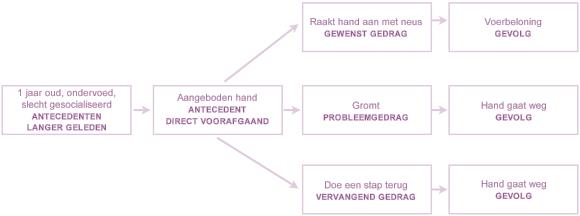 ABC diagram