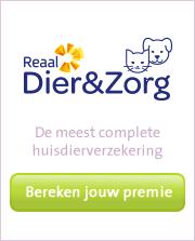 Reaal Dier & Zorg