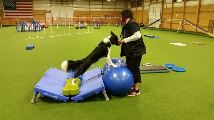 Rehabilitatie training