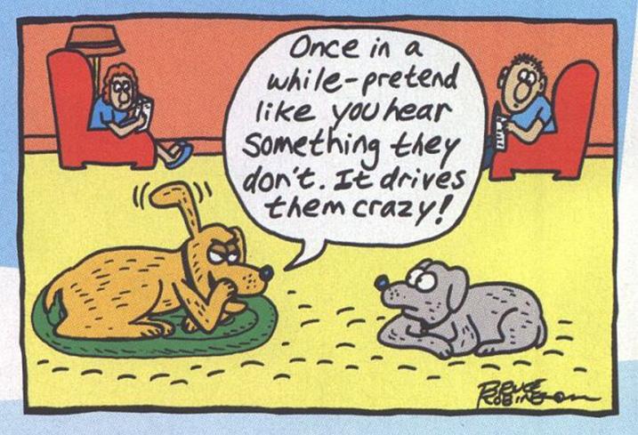 Hondenhumor