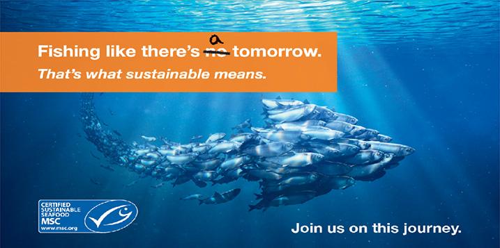Duurzame visserij MSC