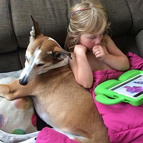 Wat is het beste hondenras voor kinderen?