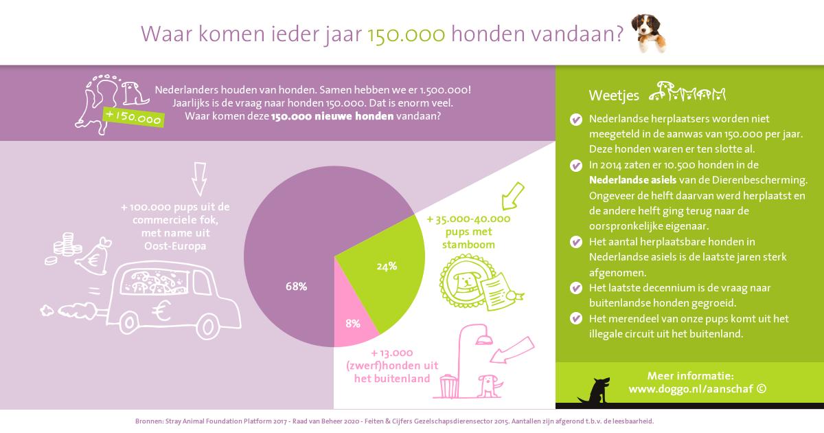 Aanschaf honden in Nederland